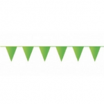 Lichtgroene vlaggetjes 10 meter kopen - Partytententverhuur Dordrecht